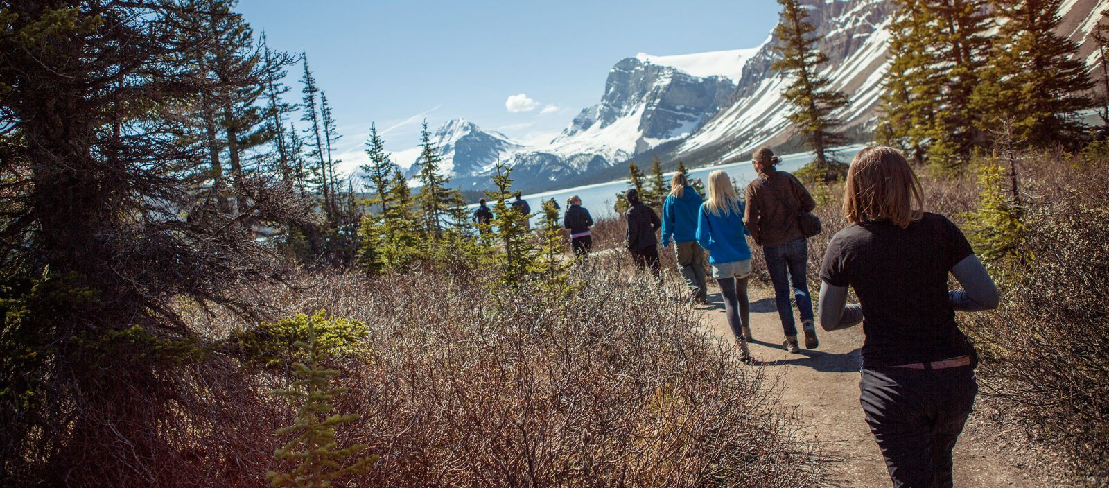 Discover the Canadian Rockies – Westbound