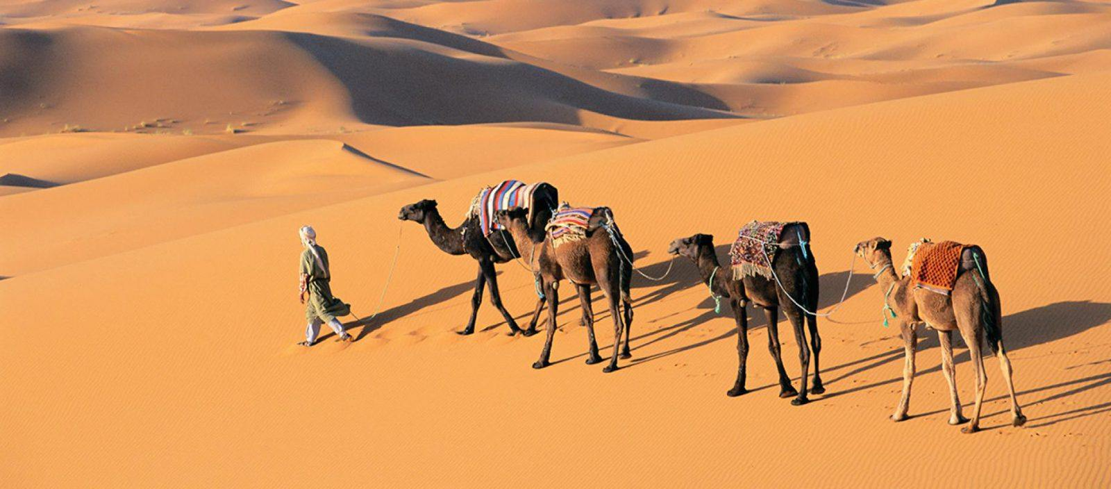 Morocco: Legendary Cities and the Sahara